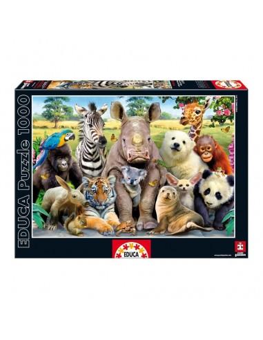 Puzzle Foto Clase 1000pz